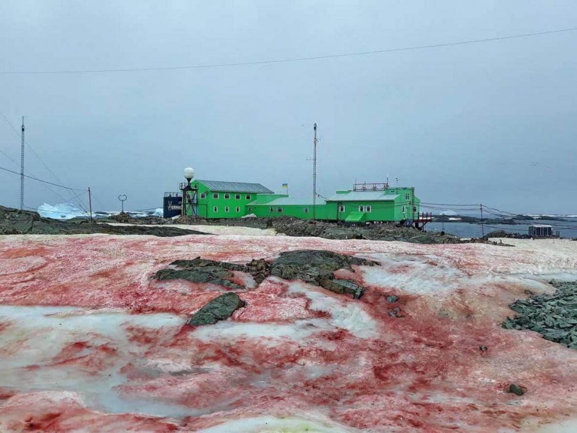 بارش برف سرخ در قطب جنوب