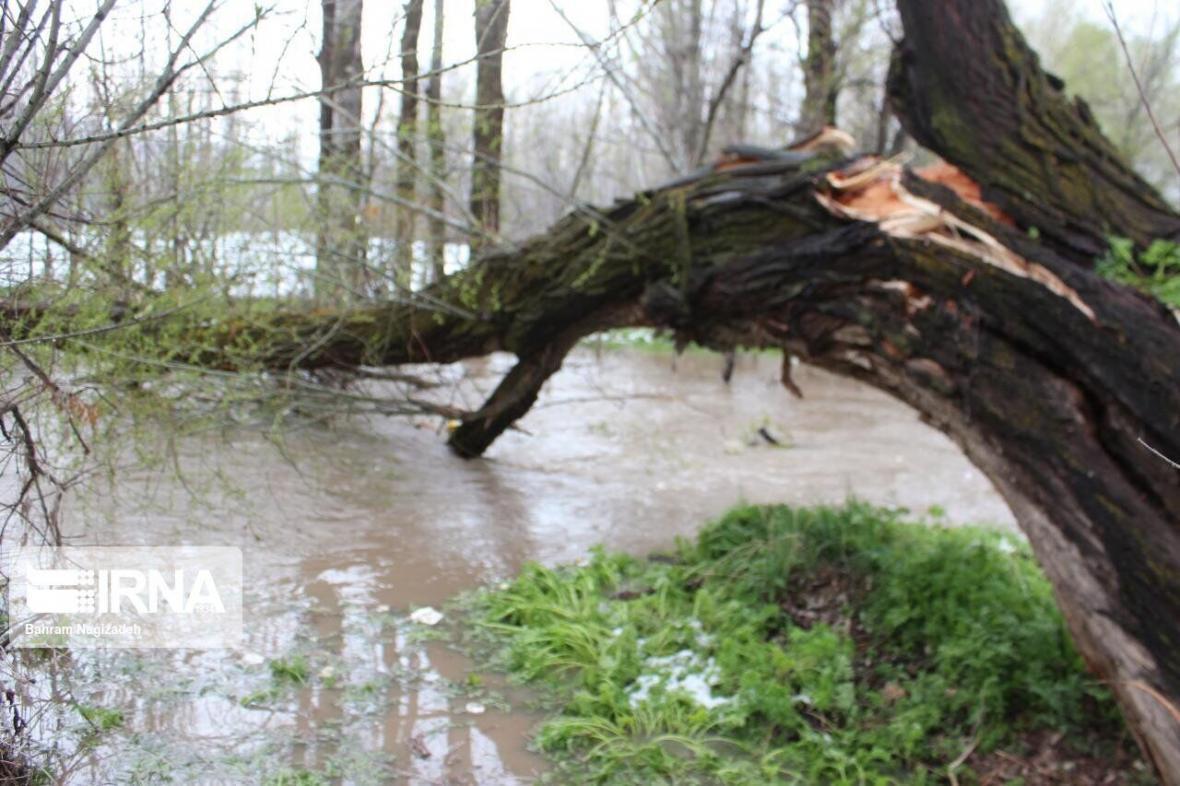 خبرنگاران بارندگی ها به 80 درصد باغات و نهرهای کشاورزی خلخال خسارت زد