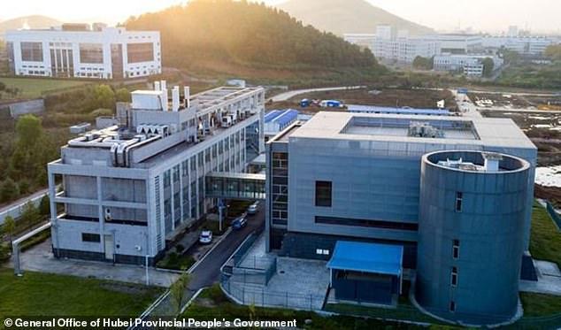 دی میل: آمریکا پیش از شیوع ویروس کرونا روی این ویروس در چین کار می کرد