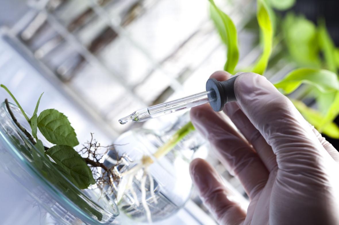 طرح های بهره برداری اقتصادی از ذخایر ژنتیکی کشور حمایت می شود