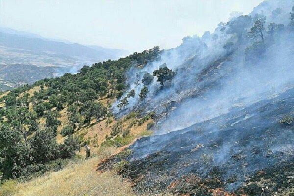 کاربردهای تصاویر ماهواره ای در پایش آتش سوزی