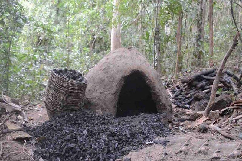 خبرنگاران 3هزار و 129 کیلوگرم زغال قاچاق در چهارمحال و بختیاری کشف شد