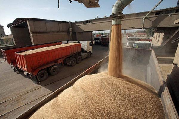 خبرنگاران نظارت بر مراکز خرید گندم در لرستان لازم است
