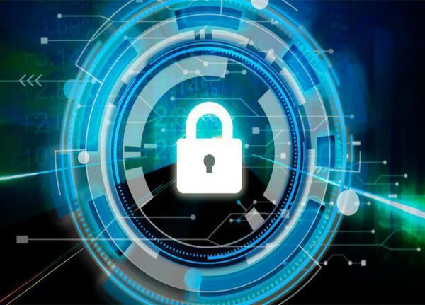 فعالیت بیش از 147 شرکت دانش بنیان و خلاق در حوزه امنیت سایبری