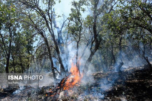 کنترل آتش سوزی جنگل های گچساران