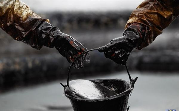 بهای نفت خام افزایش یافت